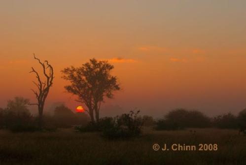 botswana-sunrise