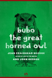 Bubo, the Great Horned Owl