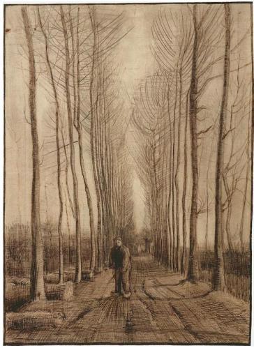 avenue-of-poplars