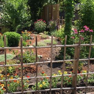 9.Butterfly garden 09