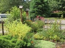 July Butterfly Garden