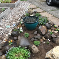 Rock garden so far...