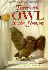 Owl in the Shower