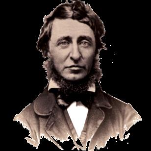 Thoreaufaintportrait